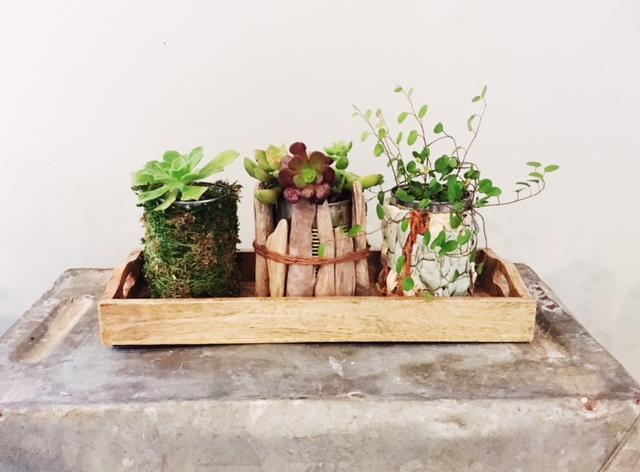 Artisan workshop bohemian plant tray mar 27 2018 for Asian cuisine ocean pines