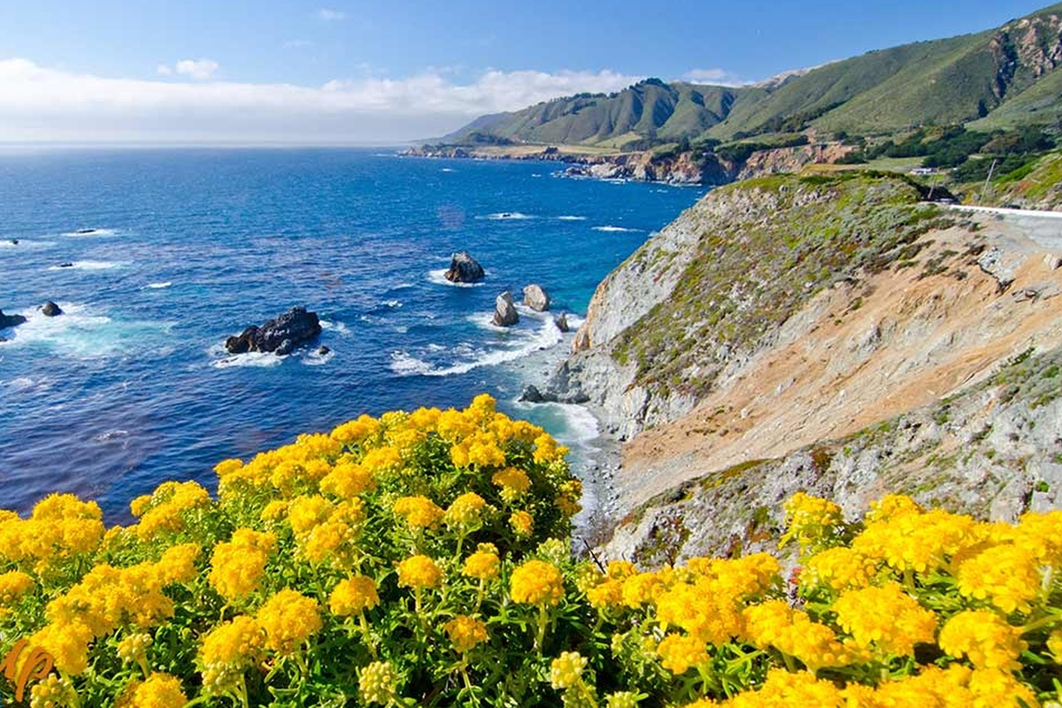 Reasons to Visit Monterey County in the Spring