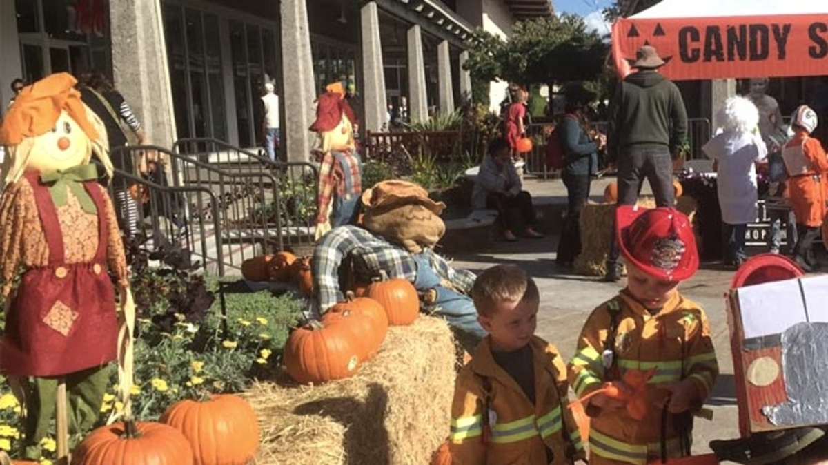Halloween Events in Monterey