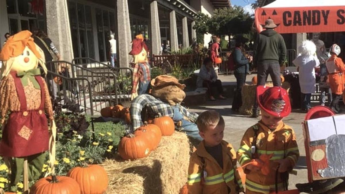 Halloween Events in Monterey