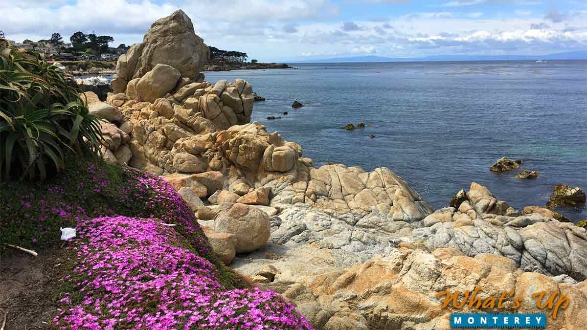 Easter Events in Beautiful Monterey County
