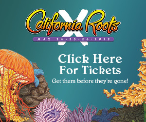 Buy Caliroots Festival Tickets