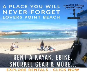 Monterey Bike and Kayak Rental