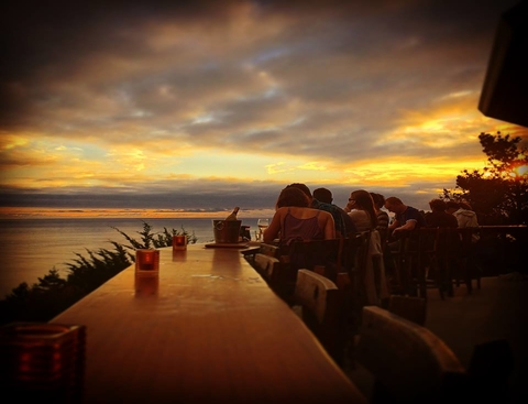Wild Coast Restaurant & Sushi Bar