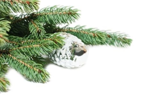 Family Ornament Making