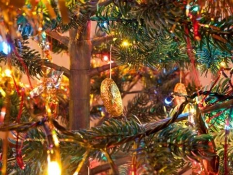 Holiday Tree Lighting and Carmel Plaza Party
