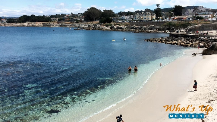Top Reasons to Visit Pacific Grove
