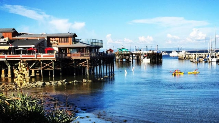 Reasons to Visit Monterey this Summer