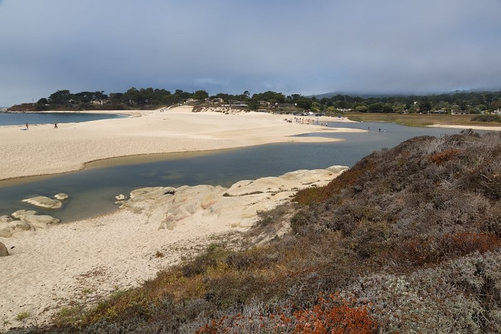 Carmel River Lagoon & Wetland Natural Preserve