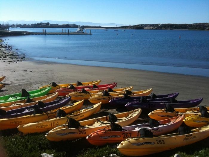 Monterey Bay Kayaks @ Monterey Beach