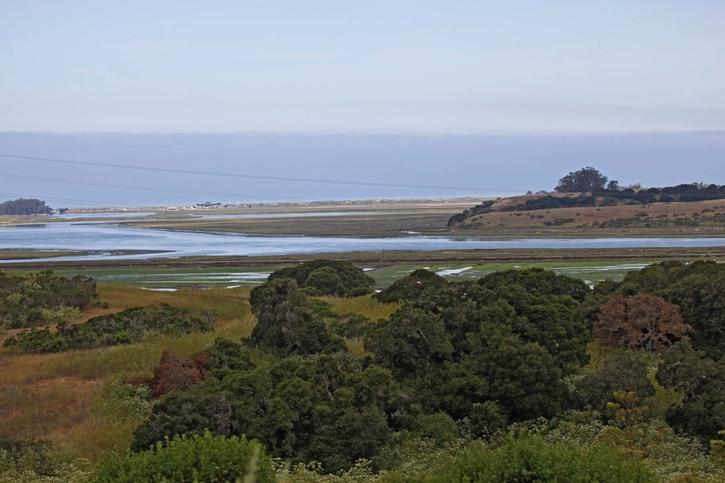 Elkhorn Slough National Estuarine Research Reserve