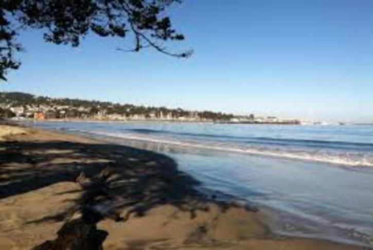 Monterey Window on the Bay