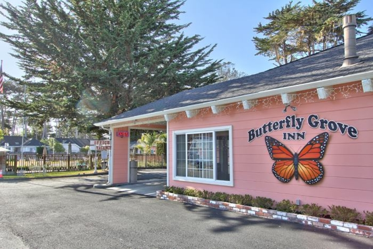 Butterfly Grove Inn