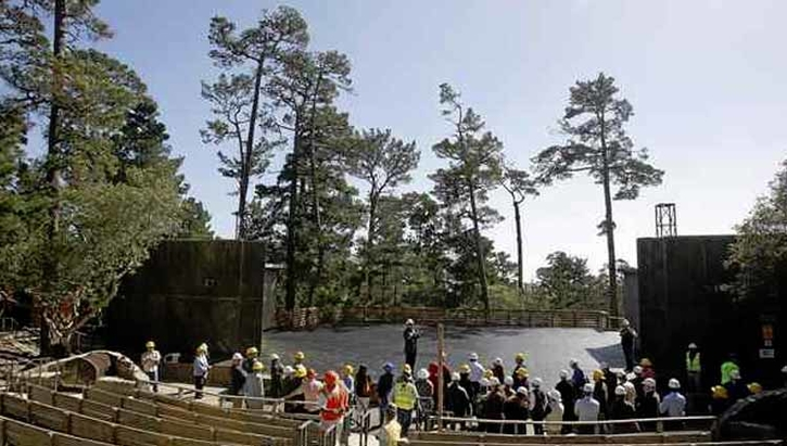 Outdoor Forest Theater